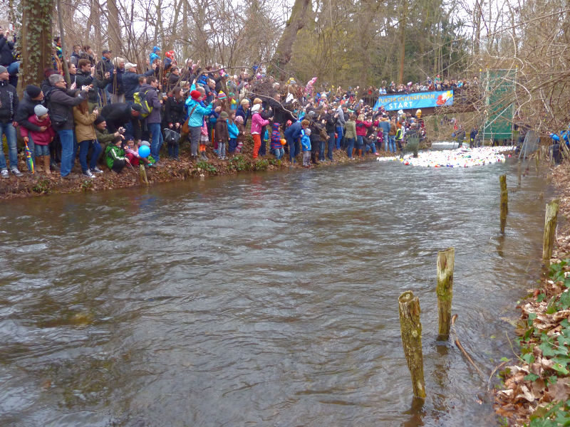 A view of the starting line